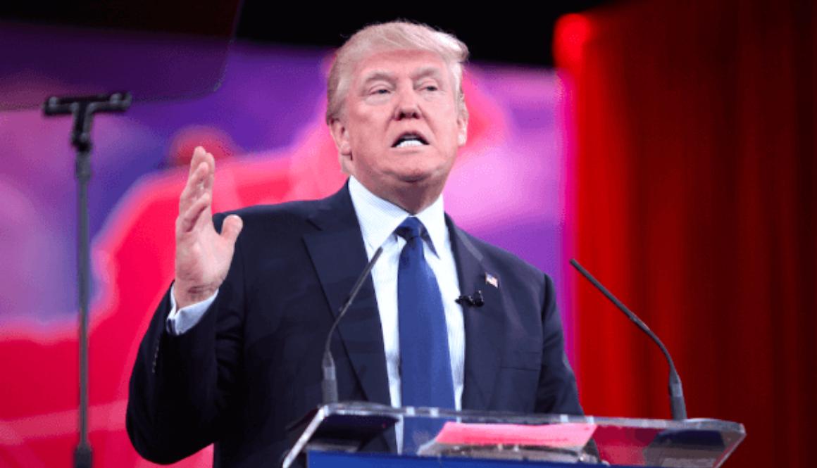 Donald Trump Publicity
